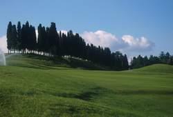 Poggio dei Medici: campo da Golf