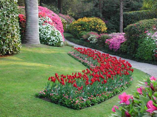 Idee per piccola aiuola - Idee aiuole giardino ...