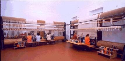 Arazzeria Scassa - Sala di tessitura ad  alto liccio