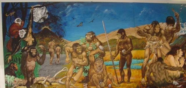 Mostra Permanente Homo Sapiens e Habitat - Fondazione Marcello Zei
