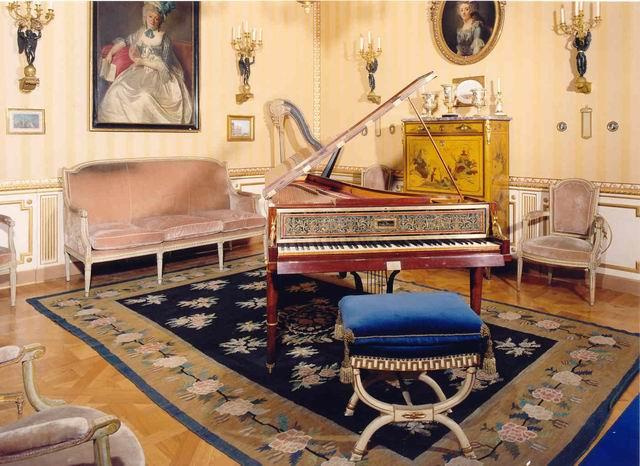 La Sala della Musica - Museo Accorsi , Torino