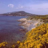 Monte Calamita - Agenzia per il Turismo Arcipelago Toscano
