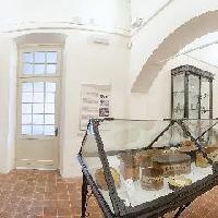 Museo civico A. Olmo e gipsoteca D.Calandra