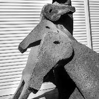 Uno scatto di Letizia Battaglia dei Cavalli di Paladino in restauro
