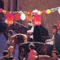 Carnevale di Barrafranca - A.A.P.I.T. ENNA