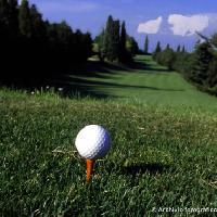 Golf la serra: Archivio fotografico Alexala - Foto Massimiliano Navarria