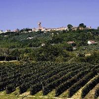 Montecarlo - Lucca (Archivio fotografico APT - PGMedia)
