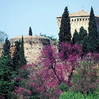 Rocca Malatestiana (Foto G. Senni - Archivio fotografico Provincia FC)